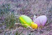 Oeufs de pâques colorés — Photo