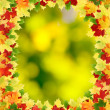Frame with autumn maple leaves. — Stock Photo