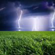 Thunderstorm with lightning in green meadow. — Stock Photo