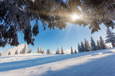 Escarchado y soleado día es en las montañas — Foto de Stock