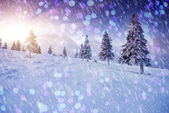 Frostiga och solig dag är i bergen — Stockfoto