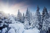 Solnedgång i vinter bergen — Stockfoto