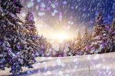 Frostig dag är i bergen. — Stockfoto