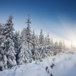Sunset in the winter mountains landscape — Stock Photo