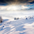 Frosty and sunny day is in mountains — Foto Stock