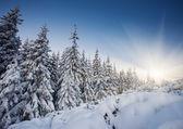 Puesta de sol en el invierno de las montañas del paisaje — Foto de Stock