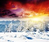 Coucher de soleil dans les montagnes de l'hiver — Photo