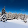 Beautiful winter landscape — Stock Photo