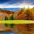 Mountain autumn landscape — Stockfoto