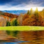 Mountain autumn landscape — Stock Photo #31521569