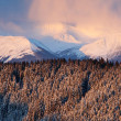 Sunset in the winter mountains — Foto Stock