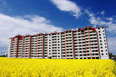 Construction with beautiful yellow field — Stock Photo