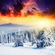 Sunset in the winter mountains — Stockfoto