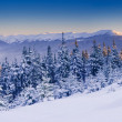 Frosty and sunny day is in mountains — Stockfoto