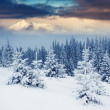 Sunny day is in mountain landscape — Stockfoto