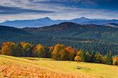 осенний пейзаж — Стоковое фото