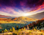 Mountain landscape with colorful forest — Stock Photo