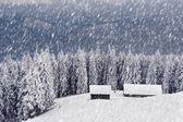 Winter in mountains — Stockfoto