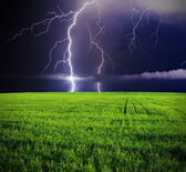 Thunderstorm in green meadow. — Stock Photo