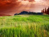 Berge, landschaft — Stockfoto