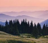 Mañana en las montañas — Foto de Stock