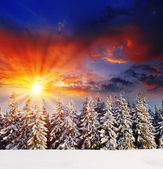 Sunset in the winter mountains — Стоковое фото