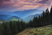 Sunrise in the mountains — Stock Photo