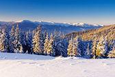 зима в горах — Стоковое фото