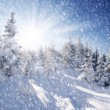 Winter in mountains — Stockfoto