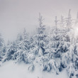 WinterFantastic winter landscape. — Stockfoto