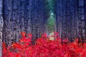 Fantástico bosque con cotinus coggygria. — Foto de Stock