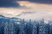 Fantastic winter landscape. — Стоковое фото