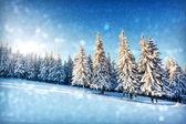 Paisaje de invierno fantástico — Foto de Stock