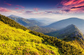 Fantastic sunny day is in mountains — Stock Photo