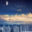 Winter landscape with snow covered trees — Stock Photo
