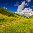 Meadows at the foot of mountain — Stockfoto