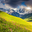 Cloudy day in Alpine — Stock Photo