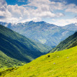 Alpine meadows — Stock Photo #32165527