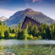 Mountain lake — Stock Photo #32165589