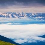 Постер, плакат: Beautiful view of alpine meadows