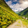 Mountain road to village — Stock Photo