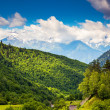 Beautiful view of alpine meadows — Stock Photo