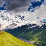 Beautiful view of alpine meadows — Stock Photo