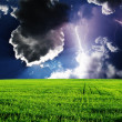 Stock Photo: Thunderstorm with lightning in green meadow.