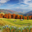 Autumn mountains landscape — Stock Photo