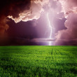 Stock Photo: Lightning in green meadow