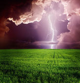 Lightning in green meadow — Stock Photo