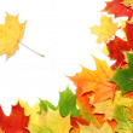 Maple leaf — Stock Photo #34938751