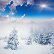 Winter landscape — Stock Photo #34935483