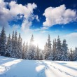 Winter landscape — Stock Photo #34935631